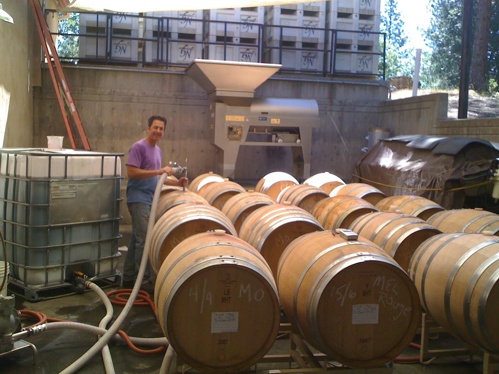 Winemaking Process 2