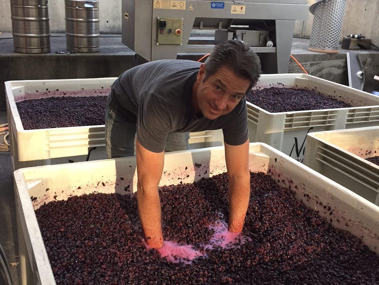 Winemaking Process 3
