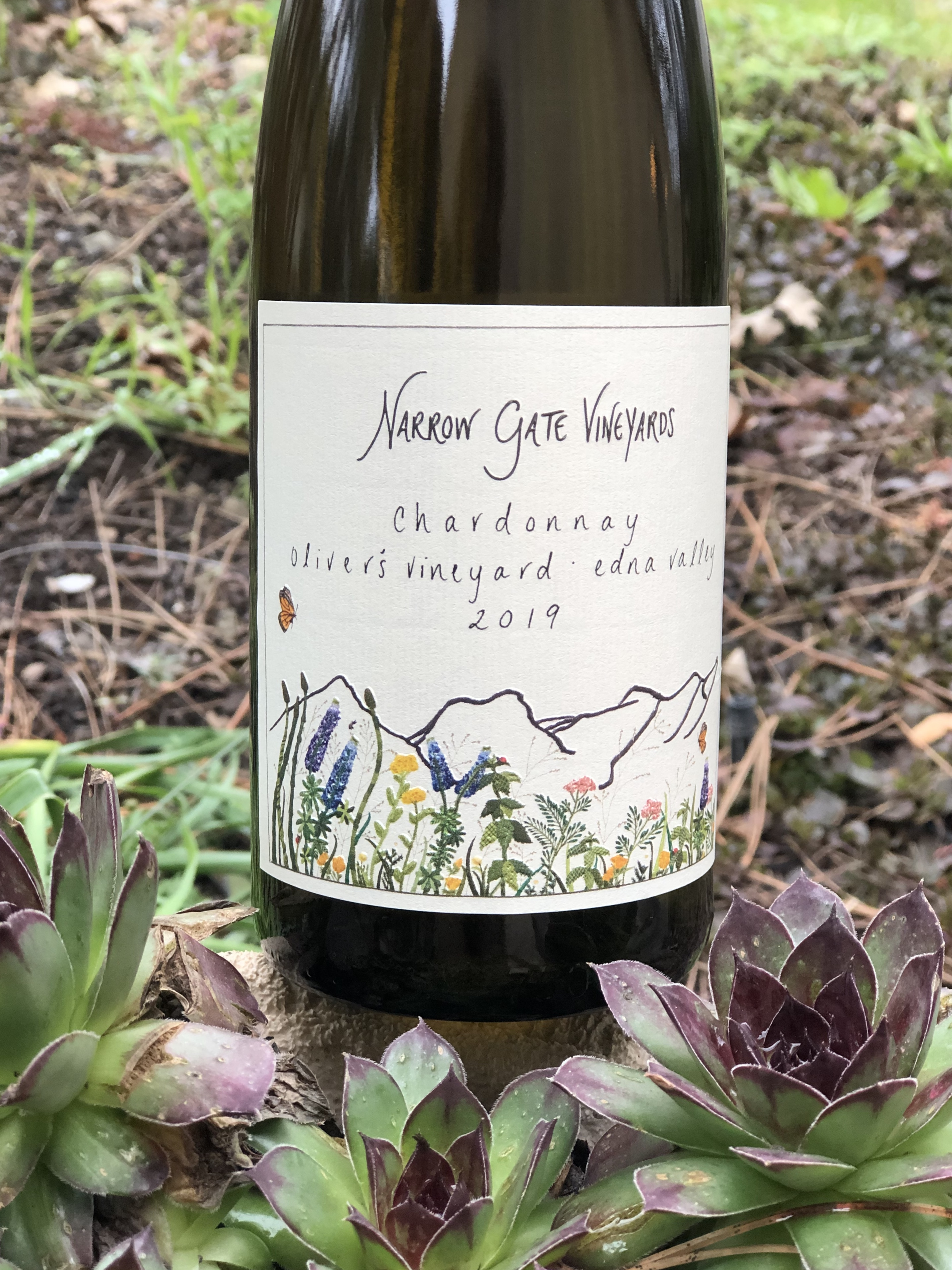 Product Image for 2019 Chardonnay, Edna Valley